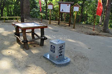 天王寺公園・茶臼山の山頂の写真素材 [FYI03145411]