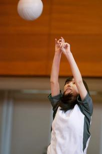 体育館でバレーをする女子学生の写真素材 [FYI03145899]