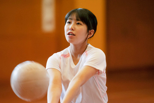 体育館でバレーをする女子学生の写真素材 [FYI03145900]
