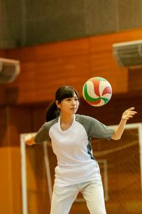 体育館でバレーをする女子学生の写真素材 [FYI03145909]