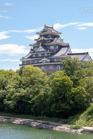 岡山城の写真素材 [FYI03145949]