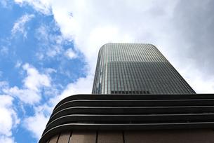 空を見上げるの写真素材 [FYI03145983]