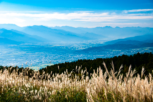 高ボッチ高原のススキ原より松本・安曇野の街並みと北アルプス連峰の稜線の写真素材 [FYI03146279]