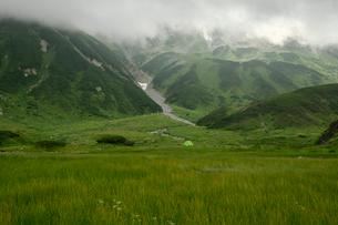 雷鳥沢キャンプ場の写真素材 [FYI03146308]
