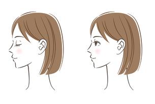 女性の横顔セットのイラスト素材 [FYI03146359]