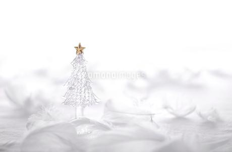がらすのクリスマスツリー  の写真素材 [FYI03146677]