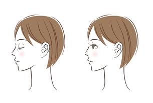 女性の横顔 セットのイラスト素材 [FYI03146735]