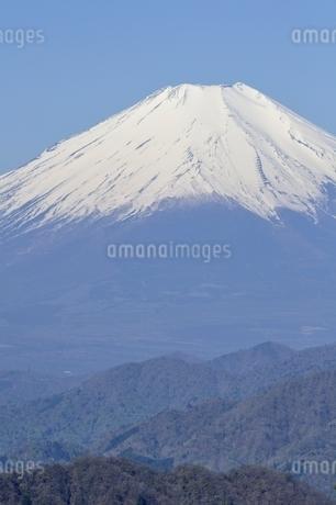 富士山の写真素材 [FYI03146941]