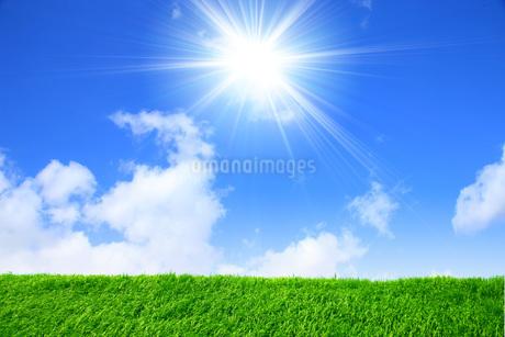 青空と太陽と草原の写真素材 [FYI03147168]