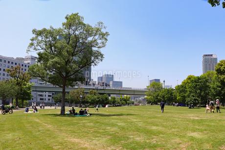街中の芝生広場の写真素材 [FYI03147612]