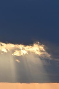 夕陽 鎌倉七里ヶ浜海岸の写真素材 [FYI03147623]