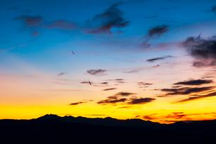 高ボッチ高原より飛騨山脈と夕焼けの空の写真素材 [FYI03147722]