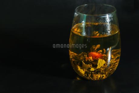 花茶の写真素材 [FYI03147769]