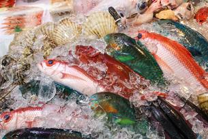 市場の魚の写真素材 [FYI03147789]