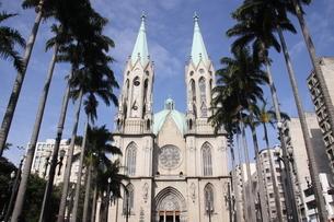 サンパウロ市にあるセー大聖堂の写真素材 [FYI03147879]