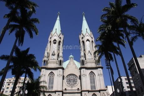 サンパウロ市にあるセー大聖堂の写真素材 [FYI03147881]