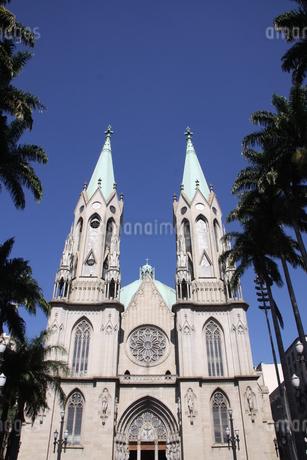 サンパウロ市にあるセー大聖堂の写真素材 [FYI03147883]
