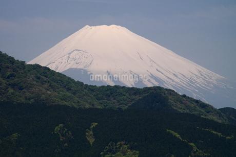 富士山の写真素材 [FYI03147943]