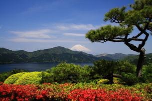 富士山と芦ノ湖の写真素材 [FYI03147946]
