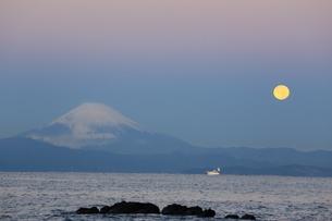 富士山と朝月の写真素材 [FYI03147954]