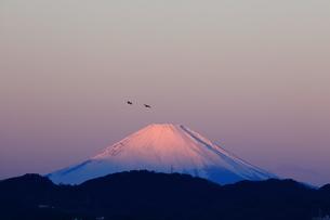 朝焼けの富士山の写真素材 [FYI03147957]