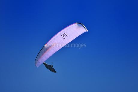 飛行中のパラグライダーの写真素材 [FYI03147977]