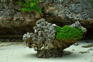ニューカレドニア・イル・デ・パンのカヌメラ湾カヌメラビーチの岩場の写真素材 [FYI03148244]