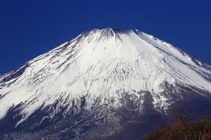 富士山アップの写真素材 [FYI03148327]