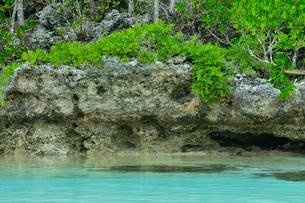 ニューカレドニア・イル・デ・パンのピッシンヌ・ナチュレル(隆起サンゴで外海と隔てられた天然のプールと言われる入江)にある洞窟の写真素材 [FYI03148339]
