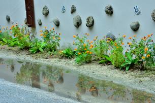 ニューカレドニア・イル・デ・パンのクト・ビーチ付近の建物の外壁に飾られた花とサンゴ等の装飾の写真素材 [FYI03148369]