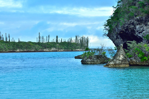 ニューカレドニア・イル・デ・パンのカヌメラ・ビーチの洞窟のある岩と遠くに見えるナンヨウスギの写真素材 [FYI03148383]