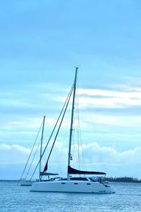 ニューカレドニア・イル・デ・パンのカヌメラ・ビーチの青い海と雲と遠くに見えるナンヨウスギの写真素材 [FYI03148397]