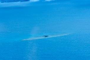 ニューカレドニア上空から見たラグーン(サンゴ礁に囲まれた海)の写真素材 [FYI03148408]