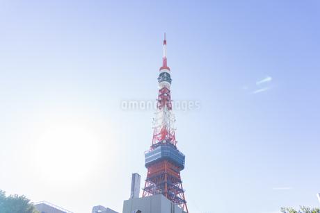 東京タワーの写真素材 [FYI03148609]