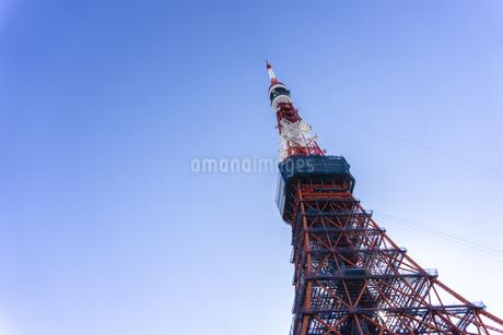 東京タワーの写真素材 [FYI03148611]