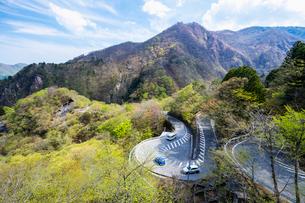 新緑の第一いろは坂 下り専用 日光市 栃木県の写真素材 [FYI03148835]