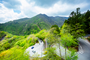 新緑の第一いろは坂 下り専用 日光市 栃木県の写真素材 [FYI03148838]