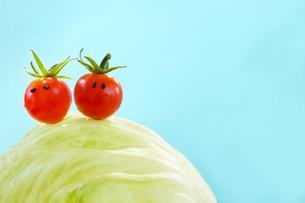 レタスに乗った顔のあるかわいいミニトマトのカップルの写真素材 [FYI03148909]