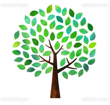 緑の木のイラスト素材 [FYI03149005]