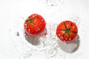 水中のトマトの写真素材 [FYI03149286]