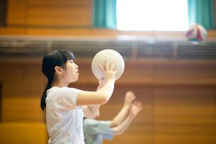 体育館でバレーをする女子学生の写真素材 [FYI03149345]