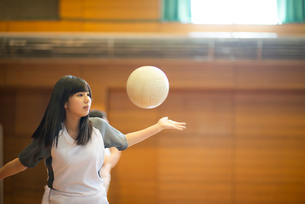体育館でバレーをする女子学生の写真素材 [FYI03149348]