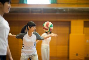 体育館でバレーの練習をする学生の写真素材 [FYI03149354]