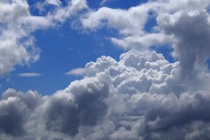 発達した入道雲の写真素材 [FYI03149952]