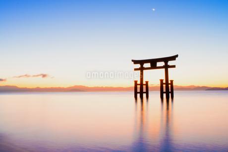 白鬚神社  日本 滋賀県 高島市の写真素材 [FYI03150138]