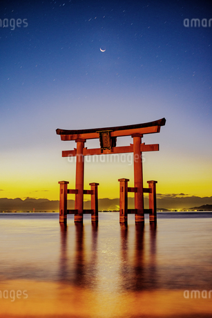 白鬚神社 日本 滋賀県 高島市の写真素材 [FYI03150139]