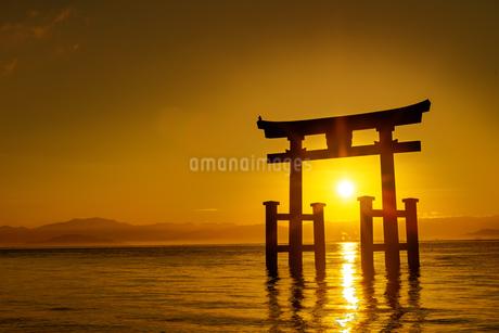 白鬚神社  日本 滋賀県 高島市の写真素材 [FYI03150140]