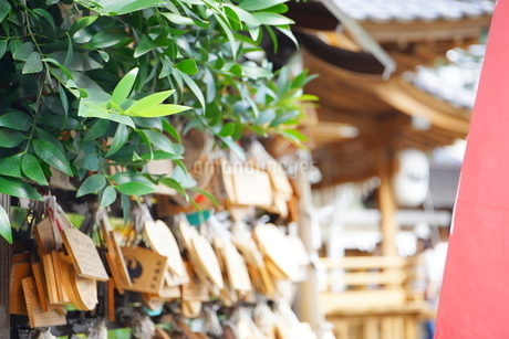 埼玉県川越市の熊野神社の写真素材 [FYI03150397]