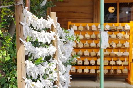 埼玉県川越市の熊野神社の写真素材 [FYI03150398]