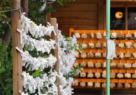 埼玉県川越市の熊野神社の写真素材 [FYI03150399]